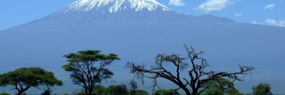 kilimanjaro-1025146_1920-1024x659
