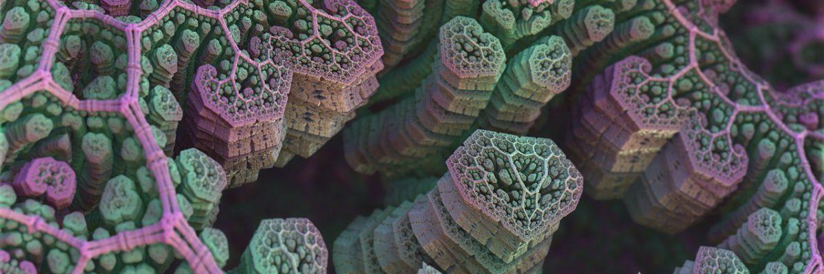 spores-1487802_1280